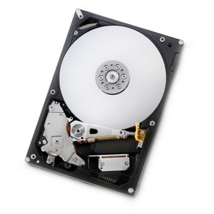 Hitachi Deskstar E7K1000 1TB 7200RPM Serial ATA-300 3.5-inch Internal Hard Drive